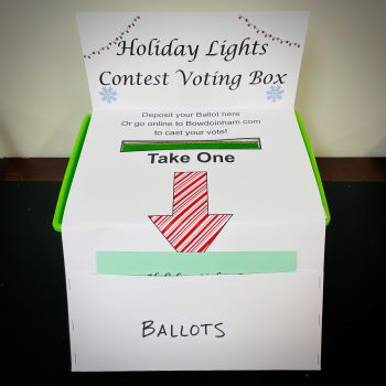 Voting Box photo
